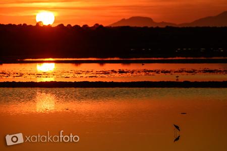 Cómo fotografiar amaneceres y puestas de sol