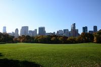 Aplicación musical para descubrir Central Park con hermosas melodías