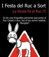 1ª Festa del Ruc de Sort (Fiesta del Burro)
