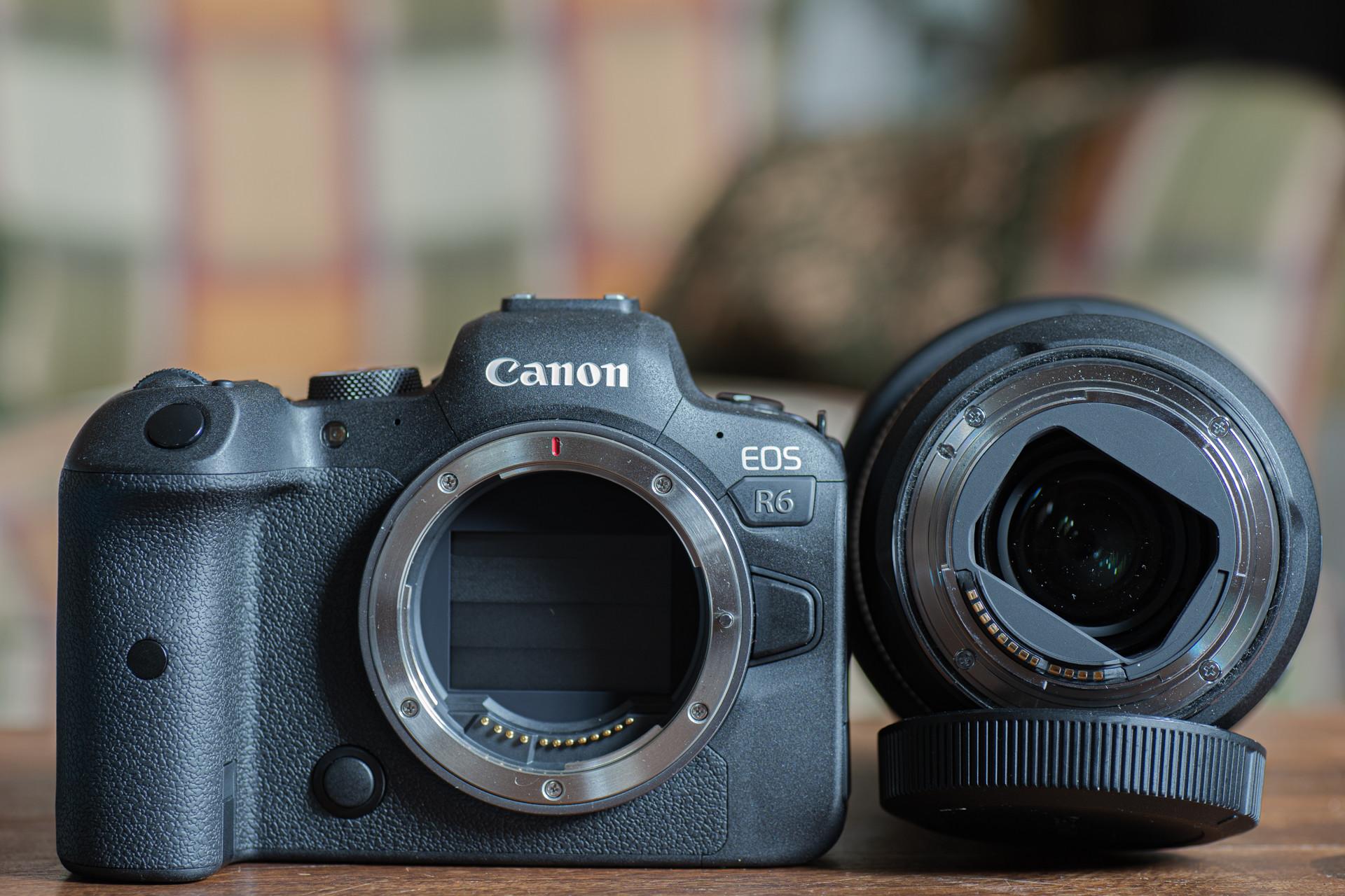 Foto de Fotos de la Canon R6 (30/36)