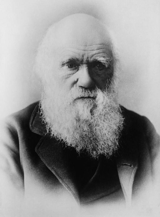 Charles Darwin 62967 1280