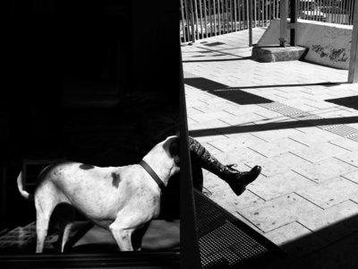"""David Salcedo: """"Para mí, la fotografía es un proyecto de vida"""""""