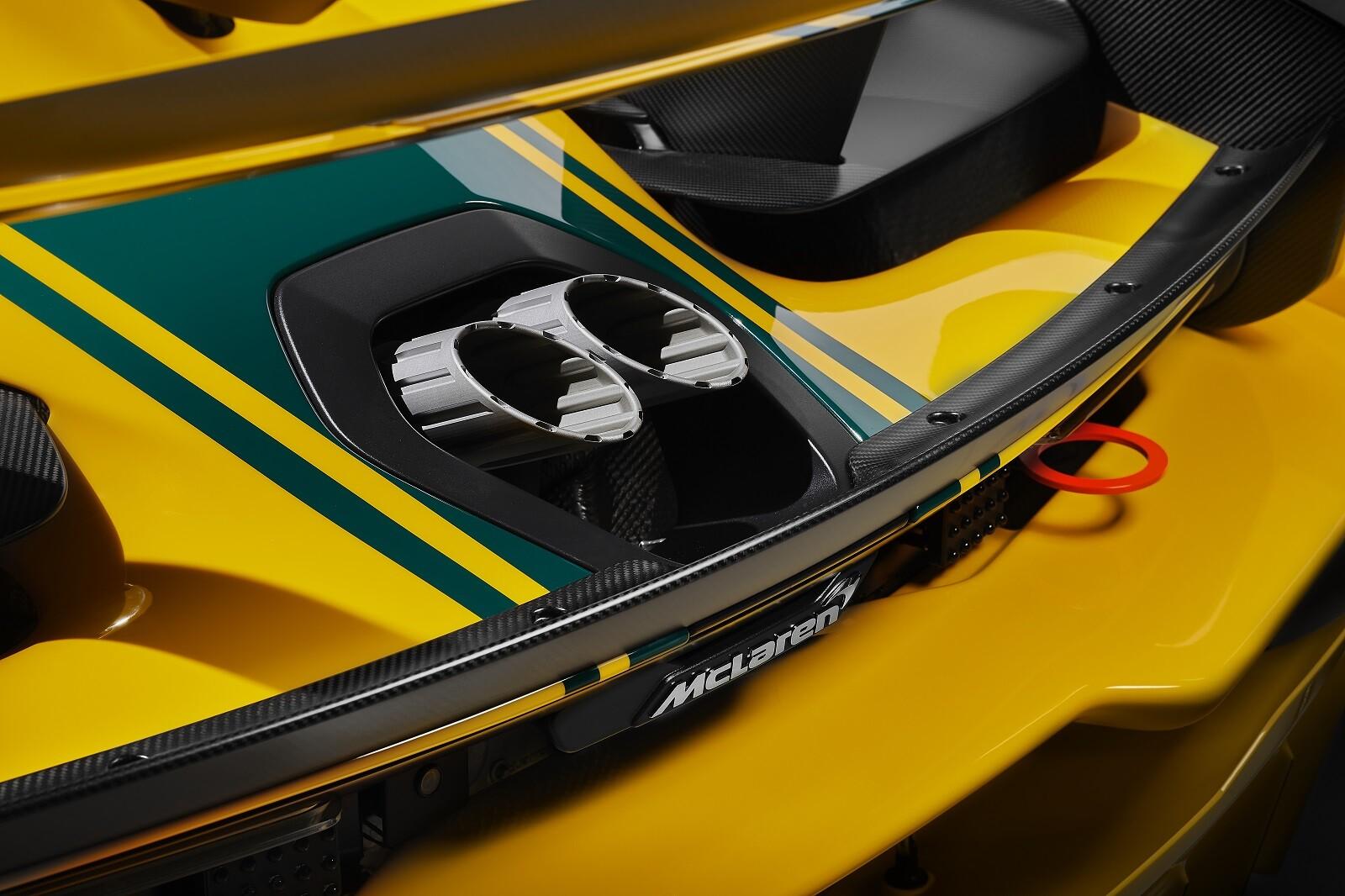 Foto de McLaren Senna GTR LM (12/48)