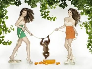 Romina Belluscio y Elena Furiase, dos gatas peleándose por un solo champú