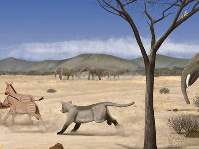 Hace 14 millones de años Madrid era una sabana desértica