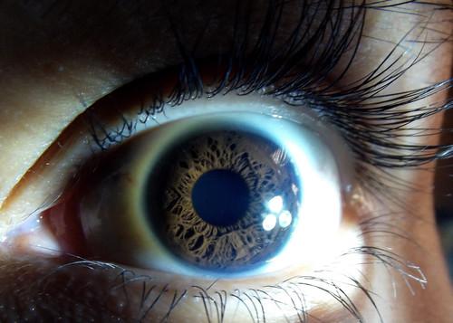 Escáner de iris o lector de huella dactilar, ¿cuál sistema de autenticación es más seguro?