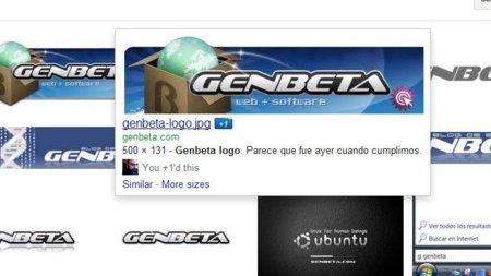 El botón +1 llega a la búsqueda de imágenes de Google