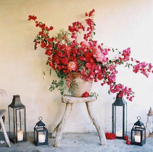 Flores Buganvilla