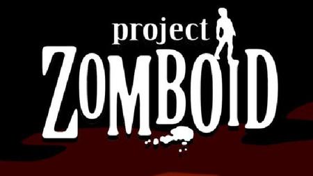 Project Zomboid podría incluir modo multijugador