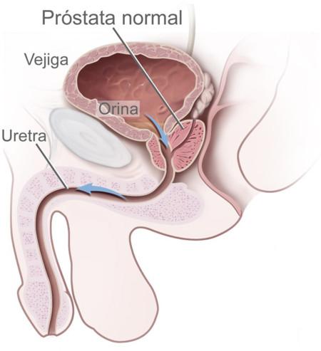 como estimular la próstata con los dedos