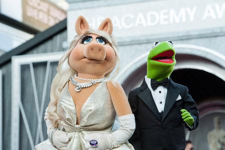 Peggy y la Rana Gustavo: impecables en la alfombra roja de los Oscar 2012