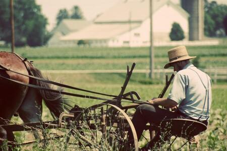 """Tecnología Amish: cómo es ser el """"late adopter"""" más lento del mundo"""