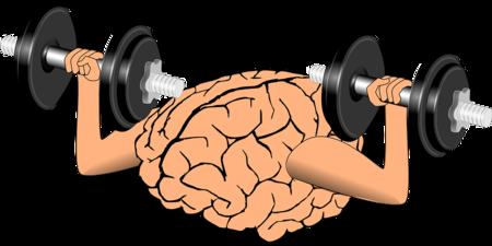 Brain 1295128 960 720