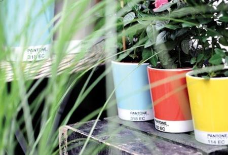 Maceteros Pantone y color asegurado en tus espacios