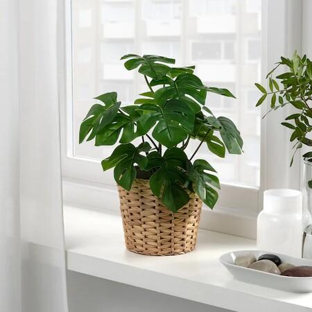Fejka Planta Artificial Int Ext 8