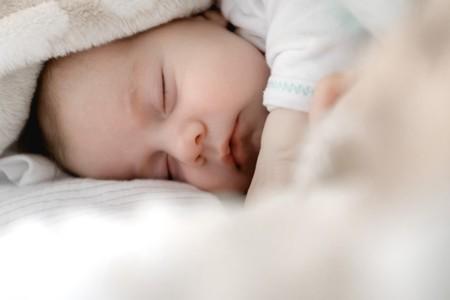 Sueno Bebe