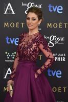 Premios Goya 2015: arrancamos con la alfombra 'rosa' y las más guapas de la noche