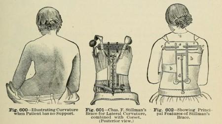 Arnés quiropractico