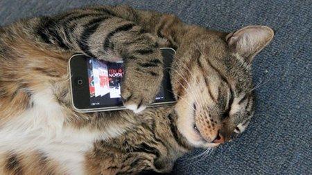 """Hackear móviles para descargar aplicaciones """"alternativas"""" será legal en EEUU"""