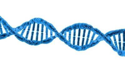 Huella genética y crímenes resueltos