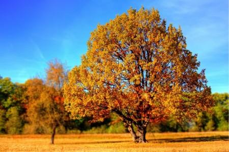 Compañeros de ruta: exprimiendo los últimos días de buen tiempo del año