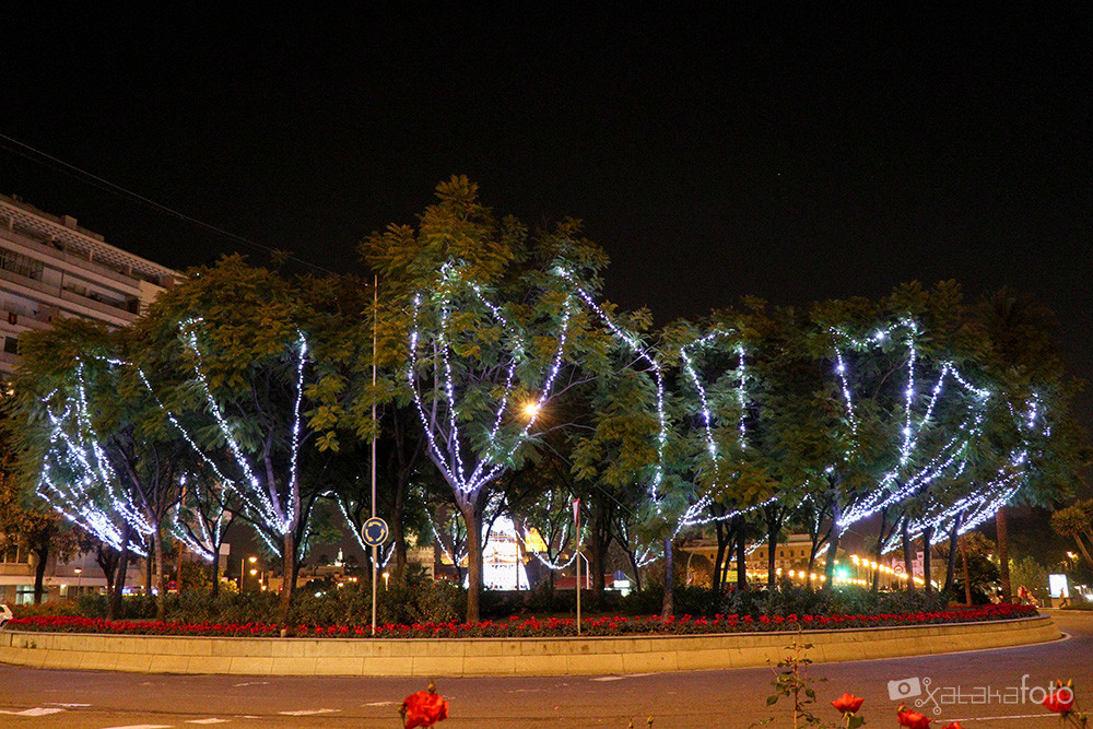 Foto de Canon EOS M5 (2/7)