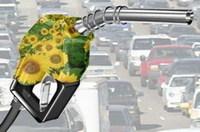 Los daños colaterales de los biocombustibles