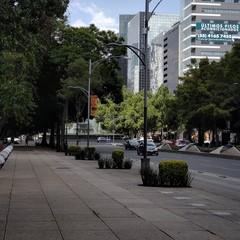 Foto 32 de 38 de la galería fotos-con-el-motorola-edge en Xataka México