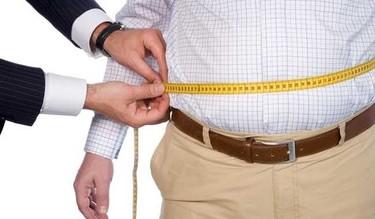 Dieta: Más sobre proteínas y grasas. ¿Sinónimo de obesidad?