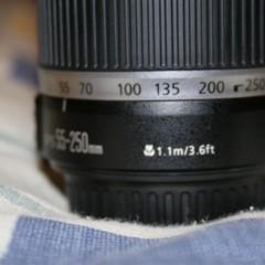 Foto 12 de 29 de la galería canon-ef-s-55-250mm-f4-56-is en Xataka Foto