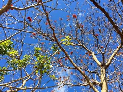Los cambios que la primavera me está pidiendo. Descubro 6 novedades top para cambiar de estación y mentalidad