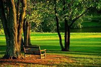 Cuidado con dónde te sientas en el parque, o acabarás haciendo dieta y apuntándote al gimnasio
