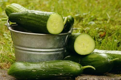 Al pepino le sienta bien el calor : cinco recetas ligeras para disfrutar de esta refrescante hortaliza