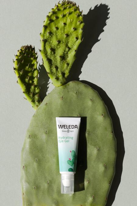 cactus weleda