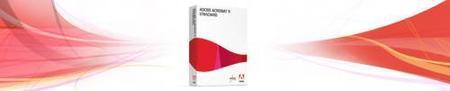 Problemas de seguridad en Adobe Acrobat Reader