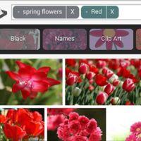 Bing ahora permite editar búsquedas de imágenes en el móvil sin tener que escribir