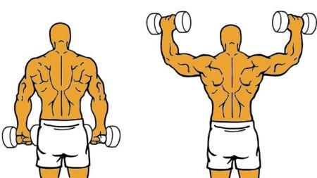 Rotación cubana: un ejercicio para fortalecer el hombro