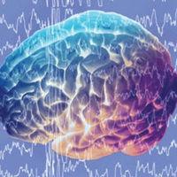 Leer o escuchar a Shakespeare puede reducir la depresión y aumentar la actividad cerebral