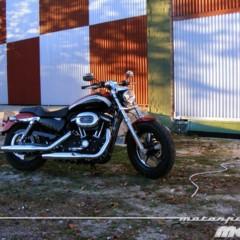 Foto 3 de 65 de la galería harley-davidson-xr-1200ca-custom-limited en Motorpasion Moto