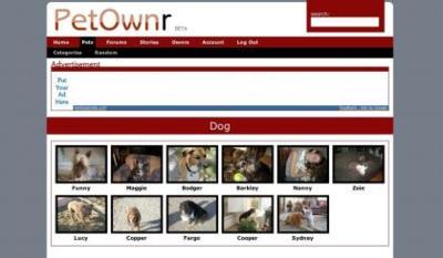 PetOwnr, las historias de las mascotas contadas por sus propietarios