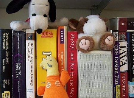 Con libros en casa, los hijos tienen mayor nivel educativo