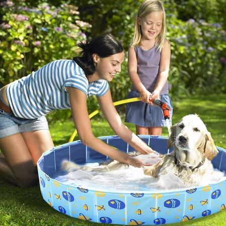 Que tu perro no pase calor con estas piscinas para mascotas