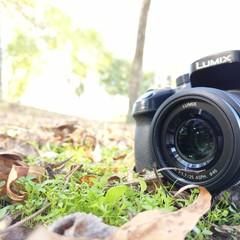 Foto 12 de 14 de la galería fotos-hechas-con-pixel-xl en Xataka