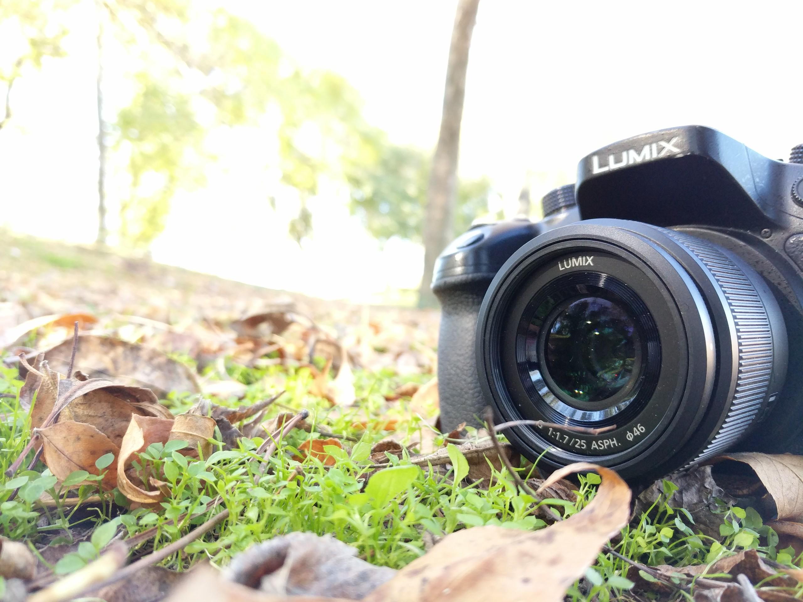 Foto de Fotos hechas con Pixel XL (12/14)