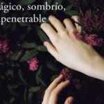 'Mágico, sombrío, impenetrable', la descripción perfecta del nuevo libro de Joyce Carol Oates