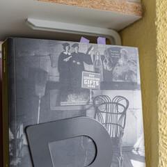 Foto 13 de 25 de la galería fotografias-de-la-sigma-fp en Xataka Foto