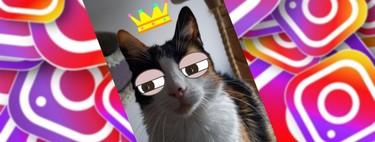 Cómo usar los filtros para mascotas de Snapchat en tus historias de Instagram