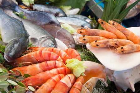 Los pescados y mariscos que puedes disfrutar esta temporada