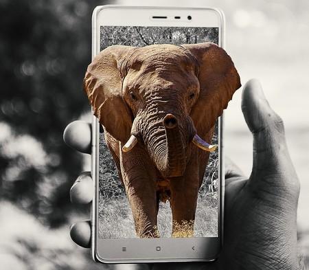 Cámaras equipadas con inteligencia artificial permitirán 'cazar' furtivos en un centenar de parques naturales de África