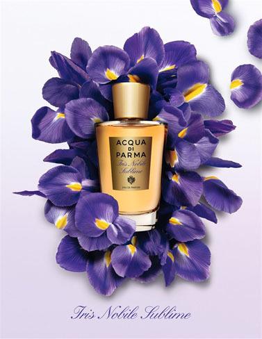Iris Nobile Sublime